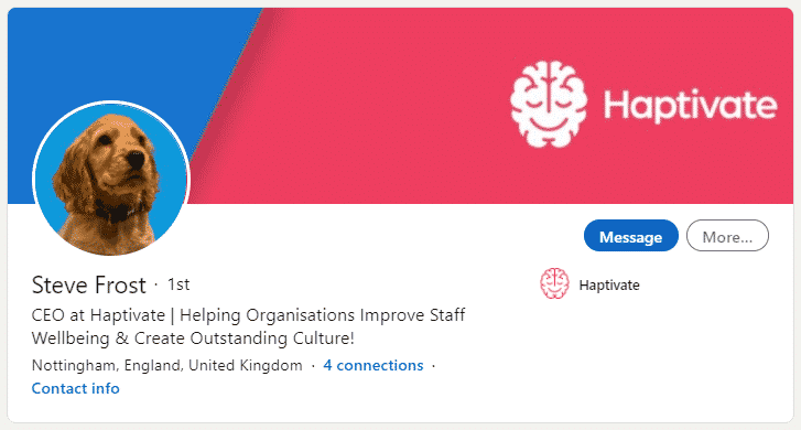 Steve Frost's LinkedIn Profile as CEO of Haptivate